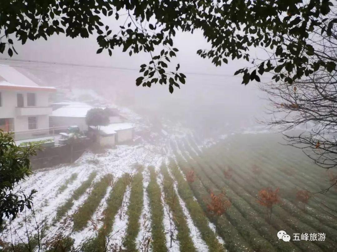 2020年五峰第一场雪惊艳亮相